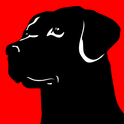 Avatar for Blackdog Home Services Salem, NH Thumbtack