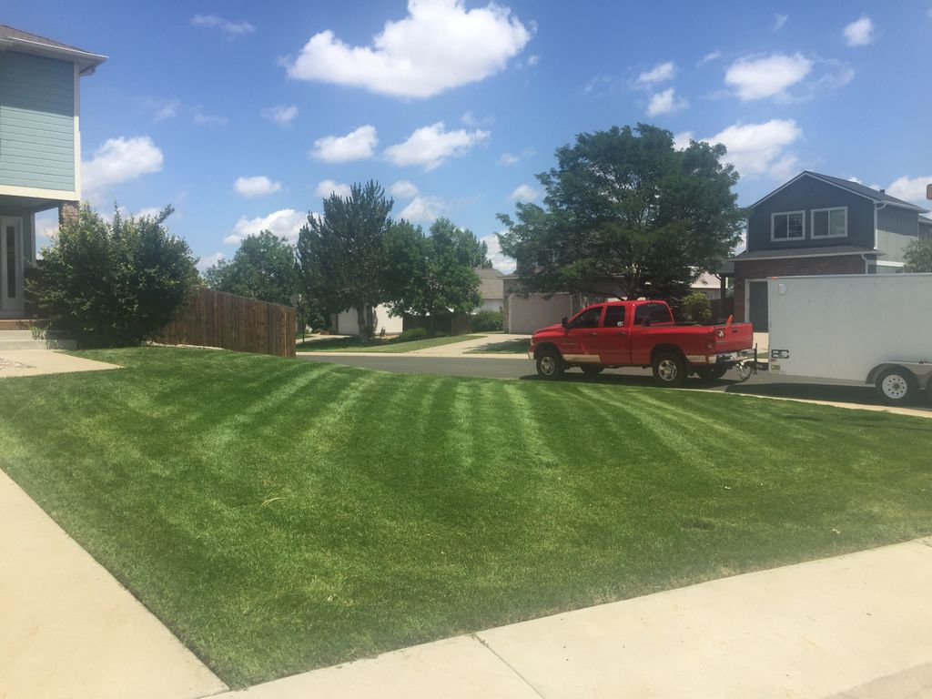 BC Lawn Care and Landscape