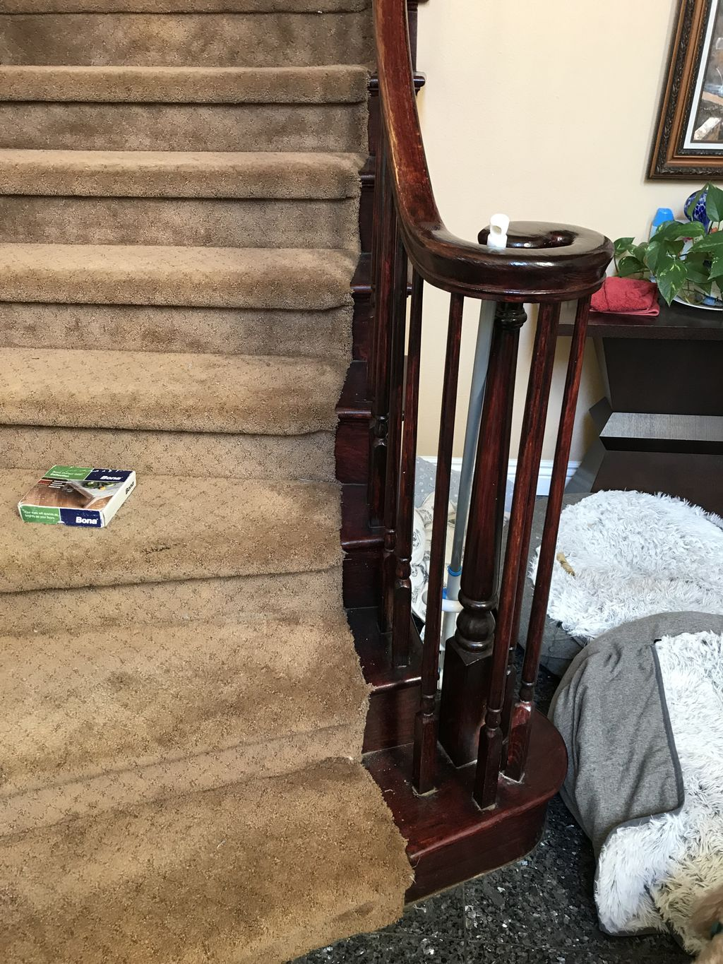 Stained Staircase
