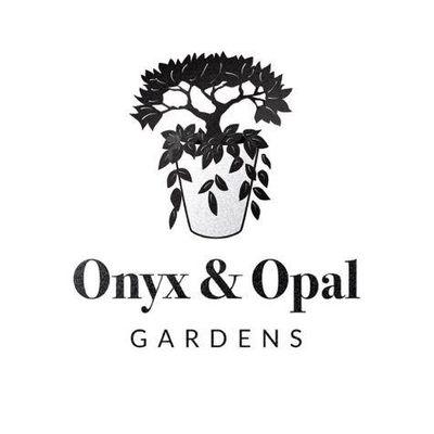 Avatar for Onyx & Opal Gardens LLC Portland, OR Thumbtack
