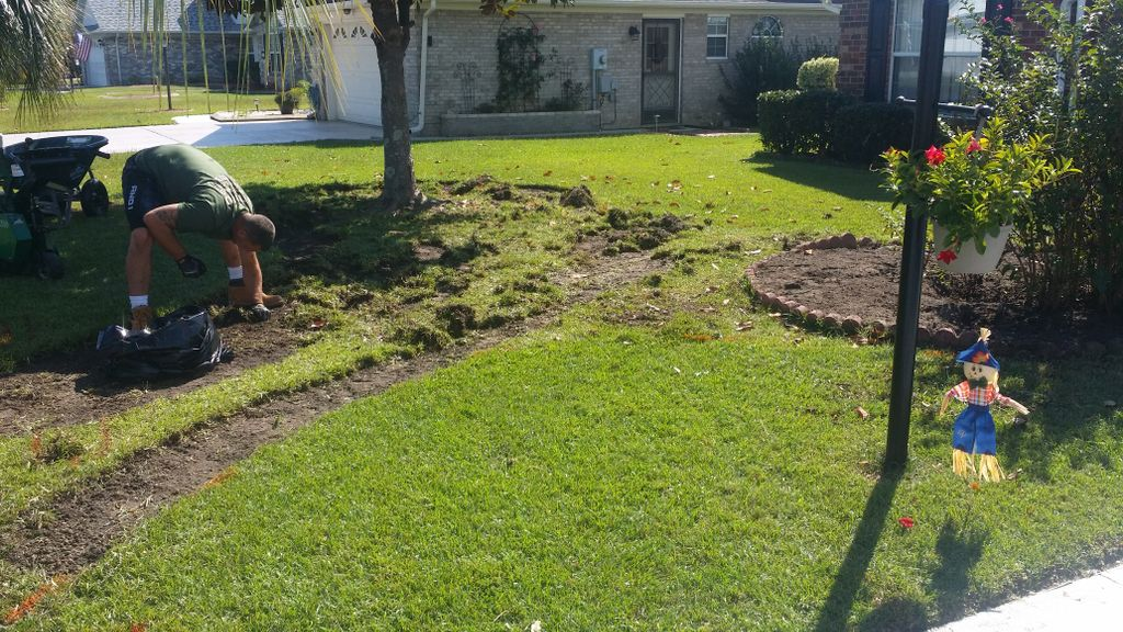 Front yard transformation