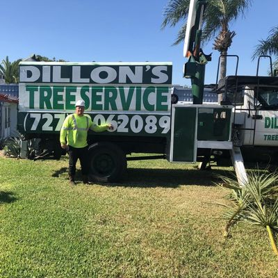 Avatar for Dillon's Tree Services Pinellas Park, FL Thumbtack