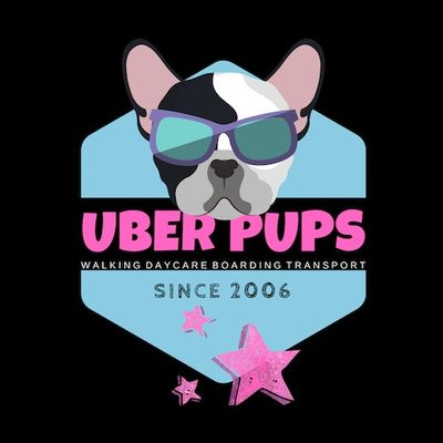 Avatar for Uber Pups Chicago, IL Thumbtack
