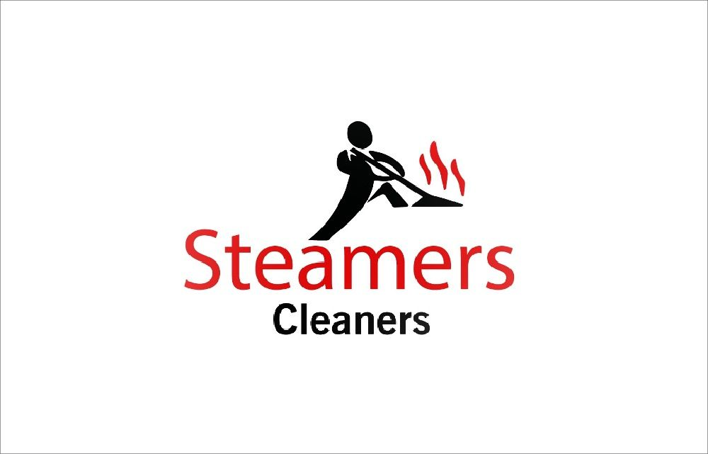 Steamers Cleaners