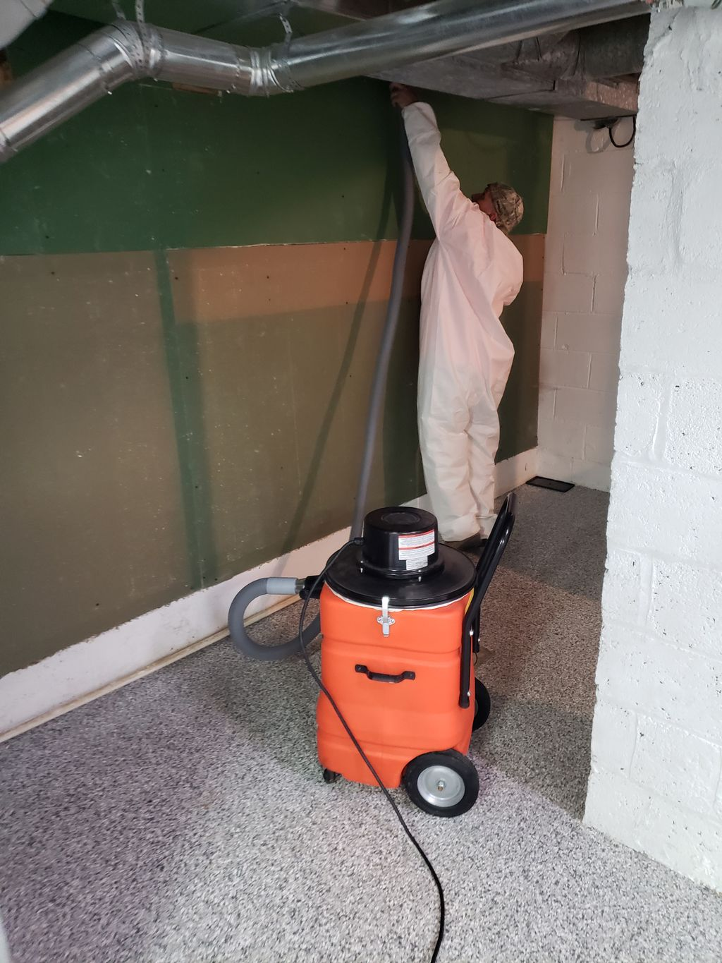 Real Estate Mold Removal