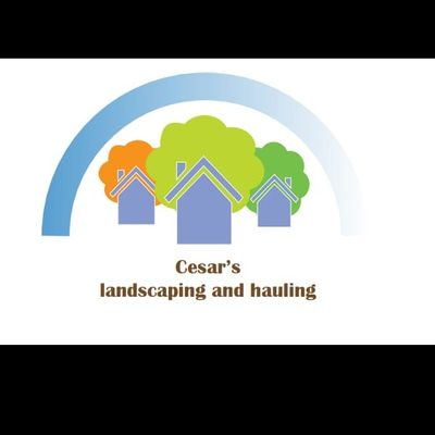 Avatar for Cesar's landscape and hauling Mcallen, TX Thumbtack