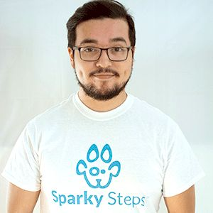 Sparky Steps - Chicago Dog Walking and Cat Sitting