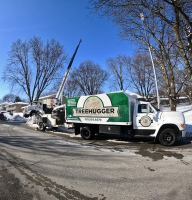 TreeHugger Complete Tree Care Des Moines, IA Thumbtack