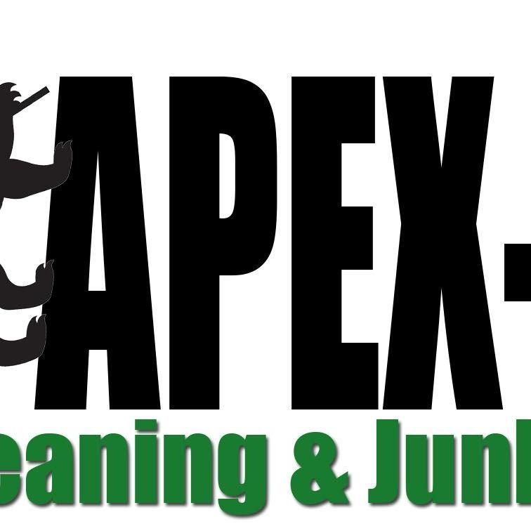 APEX Professional Cleaning Services