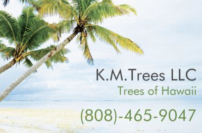Avatar for K.M.Trees LLC (Trees of Hawaii) Waianae, HI Thumbtack
