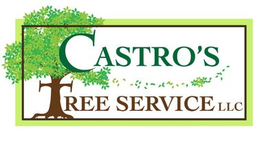 Avatar for Castro's Tree Service LLC Sarasota, FL Thumbtack
