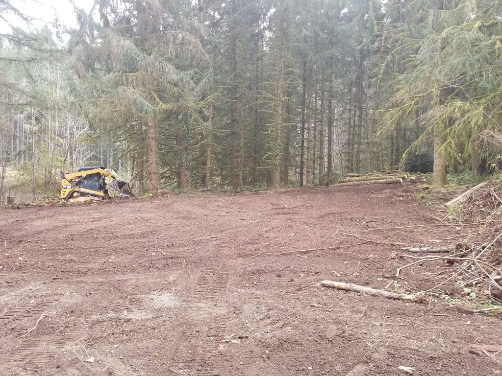 Tree removal and clearing