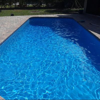 Avatar for Murray's Clear Pools Fort Lauderdale, FL Thumbtack
