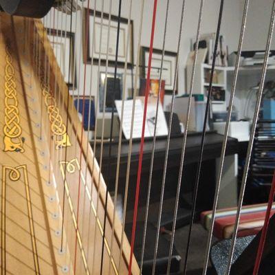 Avatar for Frisco Harp Studio / Richardson Music Studio
