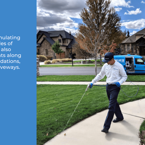 In addition to granulating your lawn, we also perform treatments along landscaping, foundations, sidewalks, and driveways.