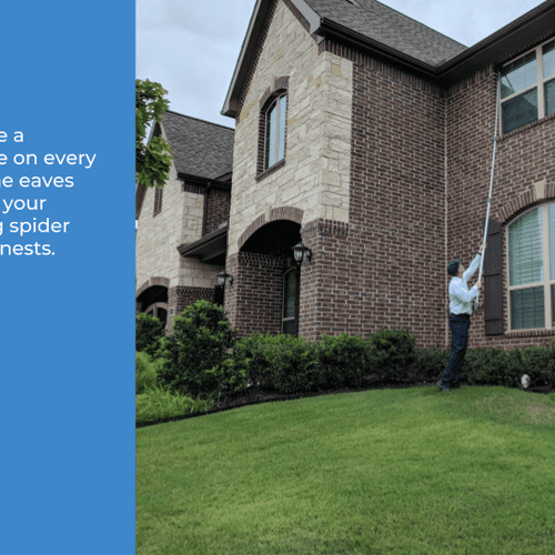 Field experts use a 30-foot web pole on every visit to sweep the eaves and windows of your home, removing spider webs and wasp nests.