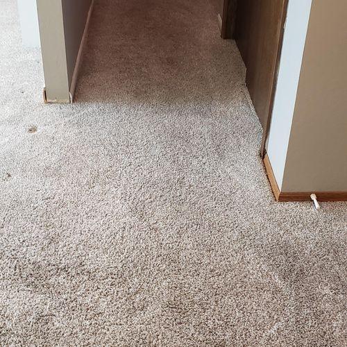 Hall Carpet After