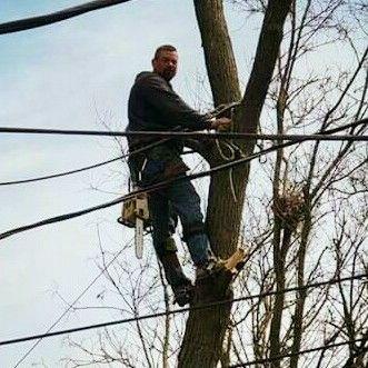 Mallard Tree Service