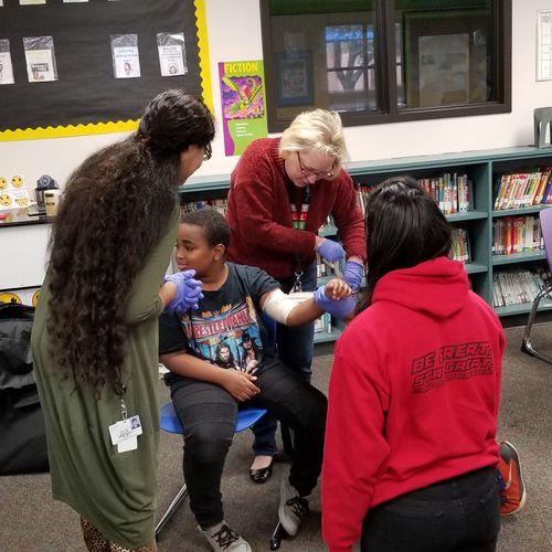 Teachers learning BLS