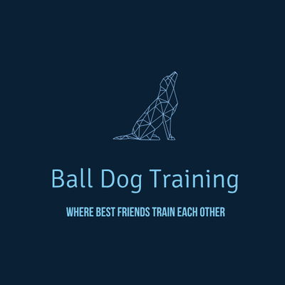 Avatar for Ball Dog Training Boise, ID Thumbtack