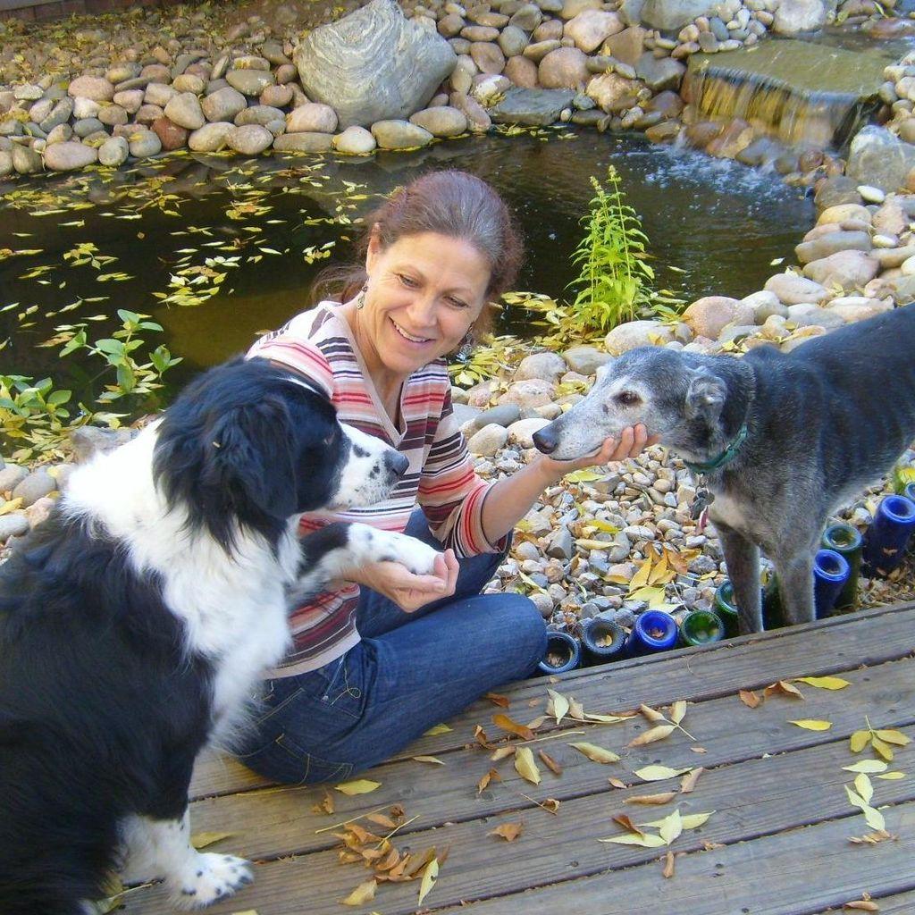 KK9 Dog Training LLC