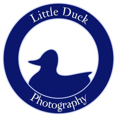 Avatar for Little Duck Photography Manchester, TN Thumbtack
