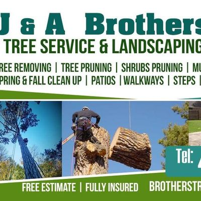 Avatar for J&A BROTHERS TREE SERVICE & LANDSCAPING Lynn, MA Thumbtack