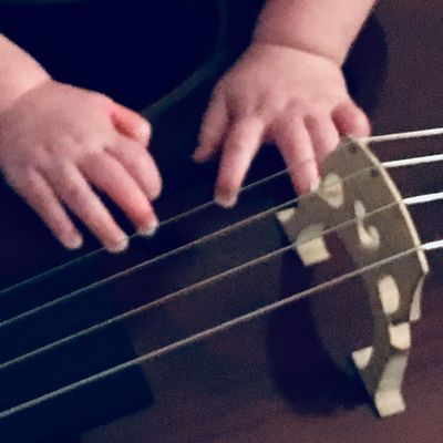 Avatar for Treble Strings Kansas City, MO Thumbtack