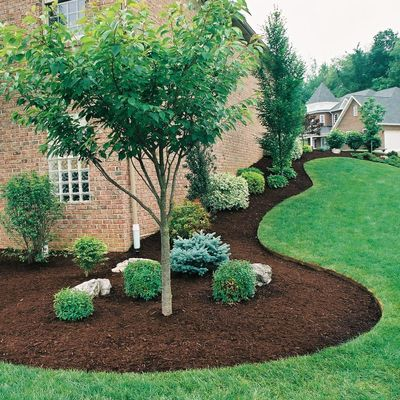 Avatar for D-Mac's Lawn and Landscape Cranberry Township, PA Thumbtack
