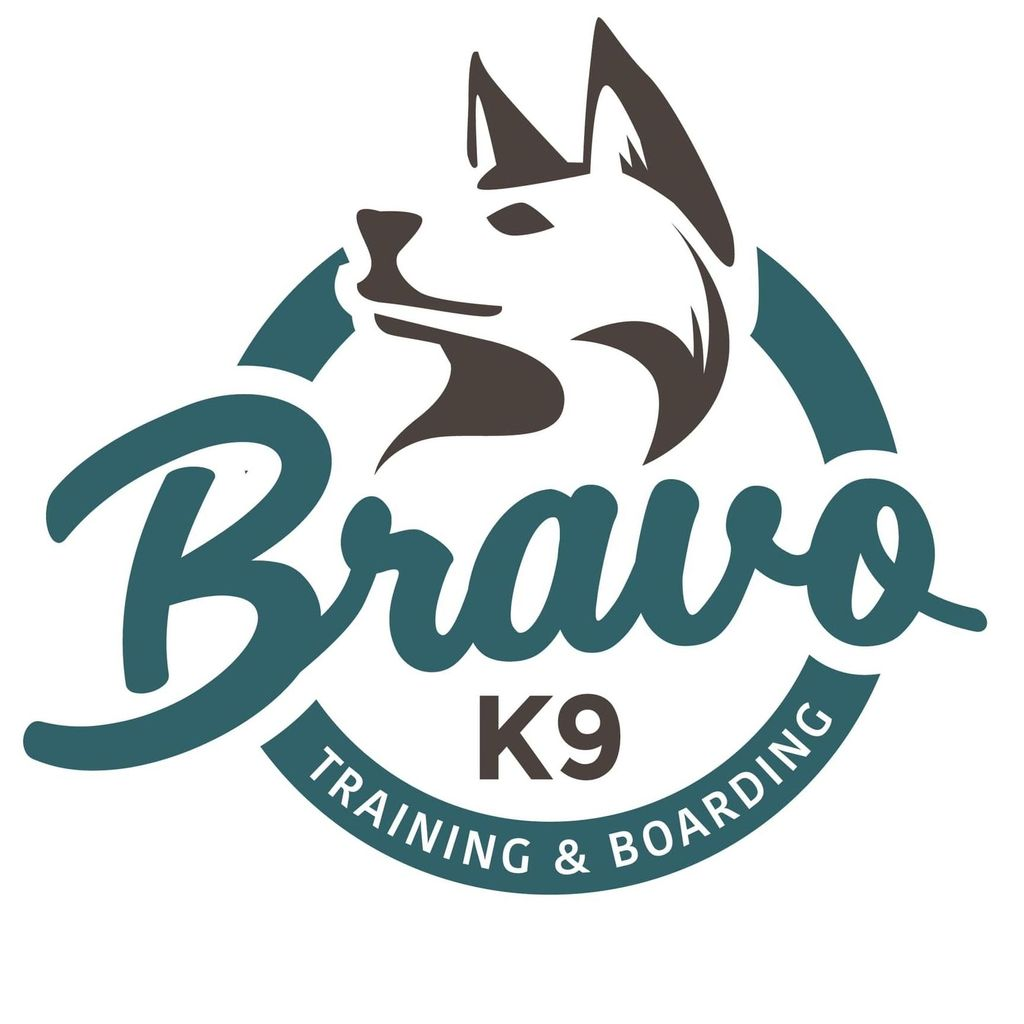 Bravo K9 Dog Training