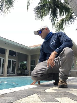Avatar for Blue Dolphin All Service Corp. Miami, FL Thumbtack