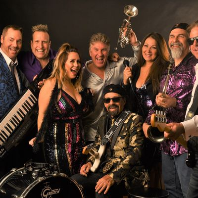 Avatar for The Groove Doctors San Ramon, CA Thumbtack