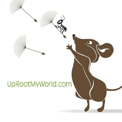 Avatar for UpRooted Weed & Pest Control Clearwater, FL Thumbtack