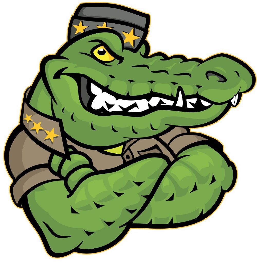 Gator Tough General Contractor and Roofing Serv...
