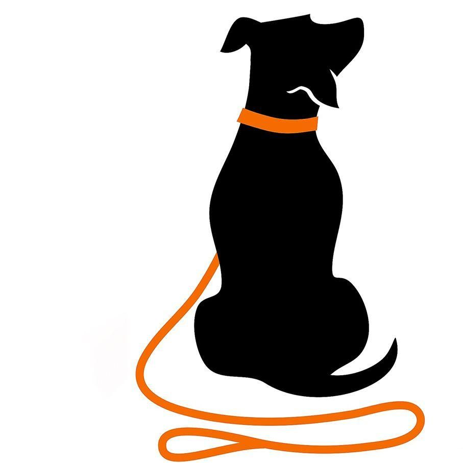 Clever Canine Dog Training