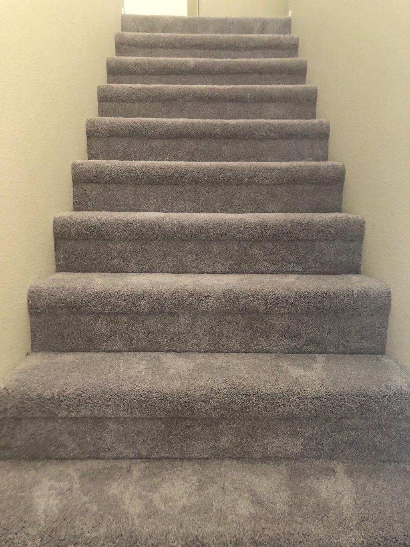 Carpet whole house