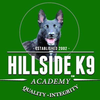 Avatar for Hillside Canine Camp Verde, AZ Thumbtack