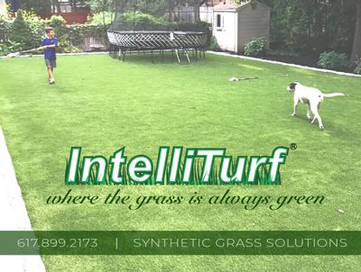 Avatar for IntelliTurf of New England Waban, MA Thumbtack