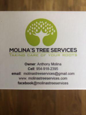 Avatar for Molina's landscape and design services Fort Lauderdale, FL Thumbtack