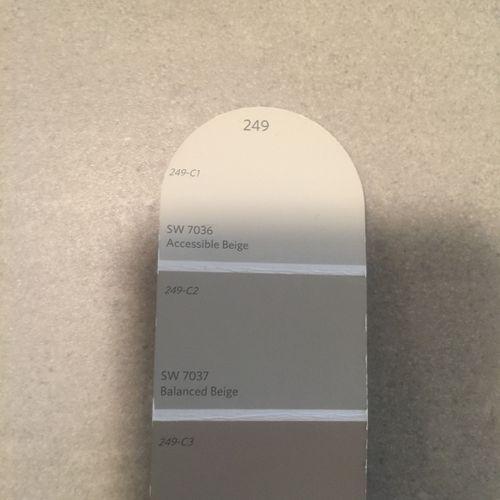 Paint Consultations