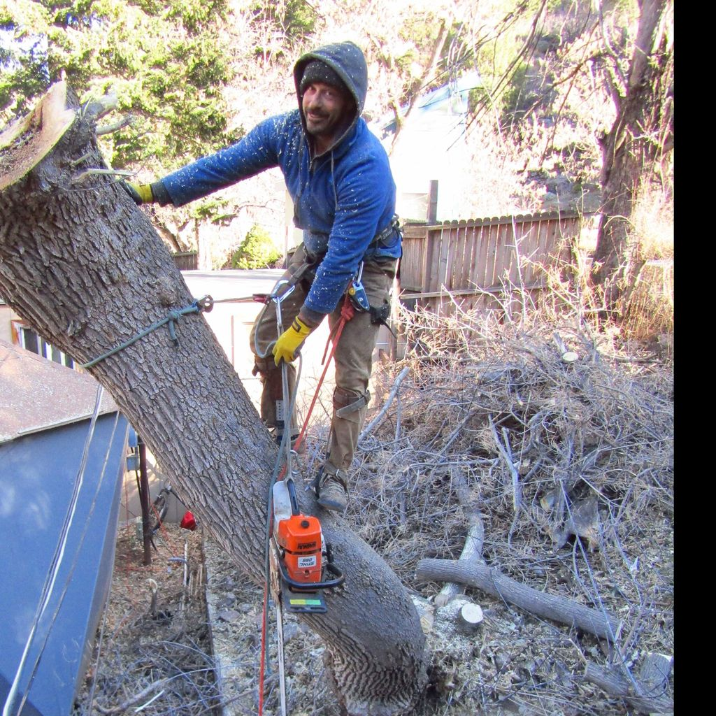 Front Range Forestry Services, LLC