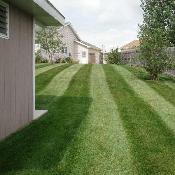 Flemmons Lawn Service
