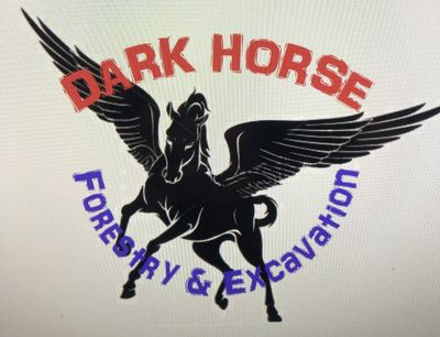 Avatar for Dark Horse Forestry and Excavation Valley, AL Thumbtack