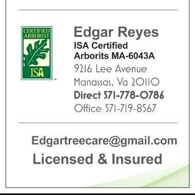 Avatar for King Tree Services, LLC Woodbridge, VA Thumbtack