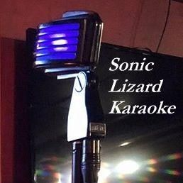 Sonic Lizard Karaoke
