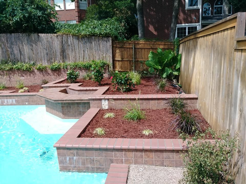 Landscaping - plants and mulch