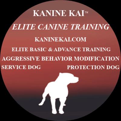 Avatar for Kanine Kai Elite Miami, FL Thumbtack