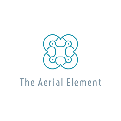 Avatar for The Aerial Element