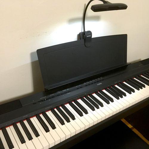 We love tickling our beautiful keys in the studio!
