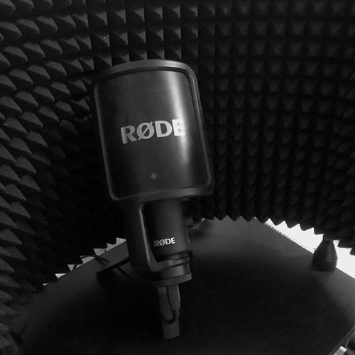 Our Voiceover Masters will help you make a REEL or DEMO to help you book more work!